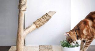 Katzemöbel, Katzenkratzer, Katzenspielzeug, Katzenzentrum, Katzengras, Baum ...