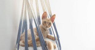 Macrame cat hammock, woven hanging cat bed, dip dye macrame cat swing, cat lover gifts, pet supplies