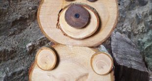 Artikel ähnlich wie Slice of Wood / Bear Log on Etsy – # to #Articles #woodsLo … #WoodWorking
